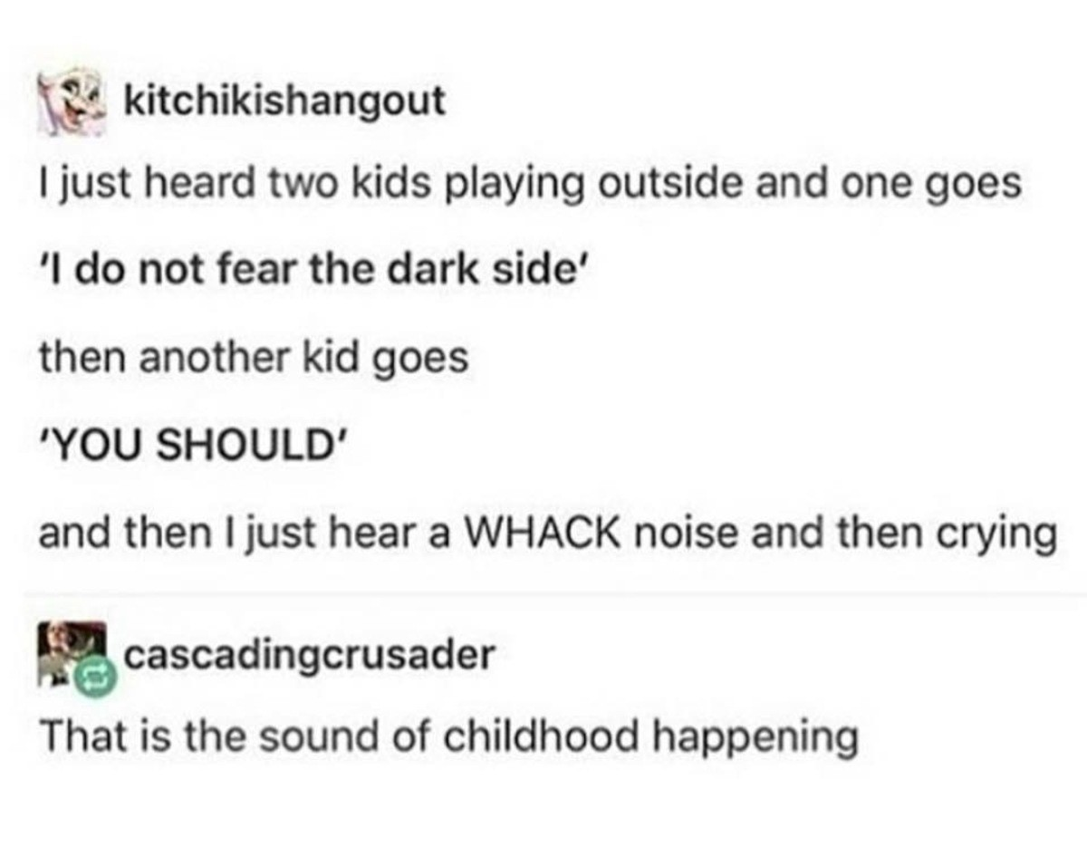Order 66. . I just heard two kids playing outside and one goes do not fear the dark side' then another kid goes YOU SHOULD' and then Ijust hear a WHACK noise an
