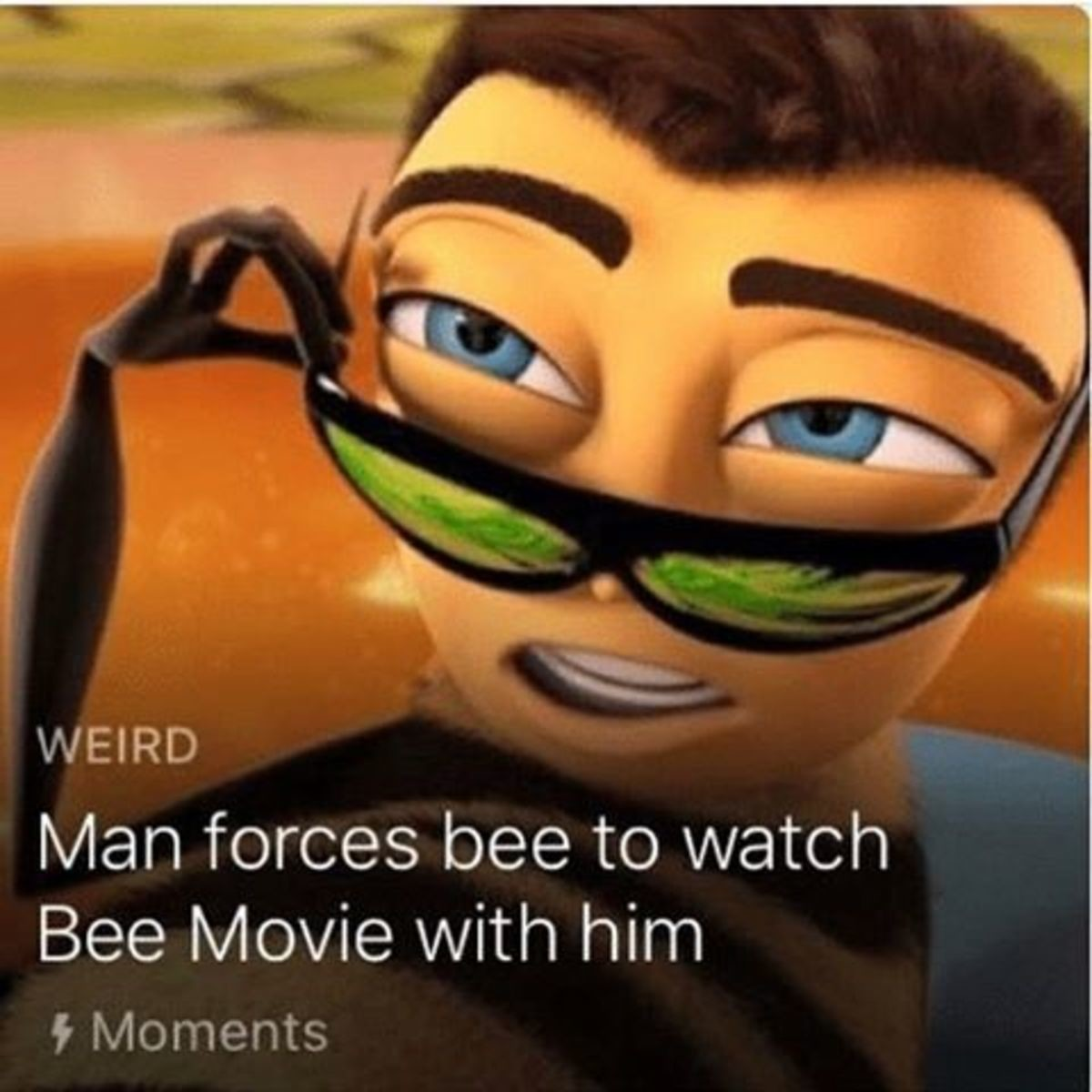 Other worldly things. . WEIRD Man forces bee to watch Bee Movie with him h,/ laments. >its real