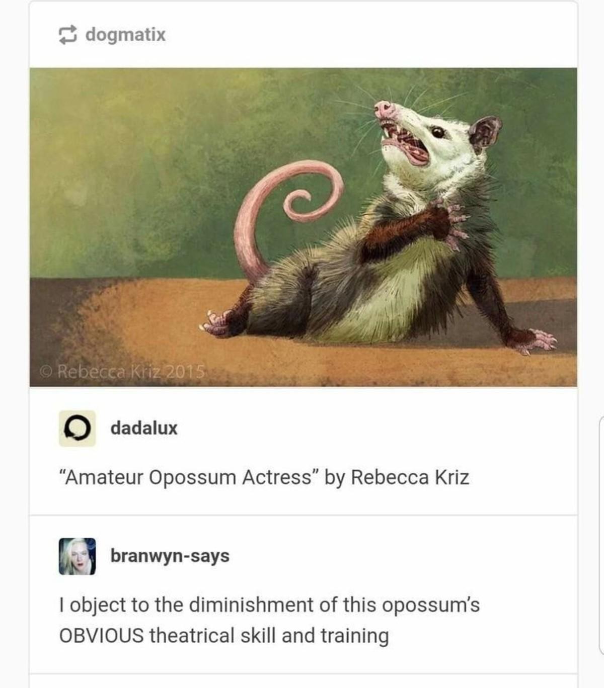pastoral loutish unusual Squid. .. Ozzie Opossum (detail)