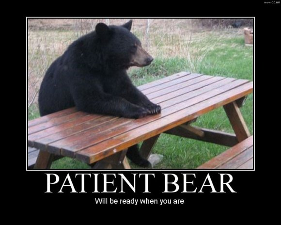 Patient Bear. . Will be ready when you are