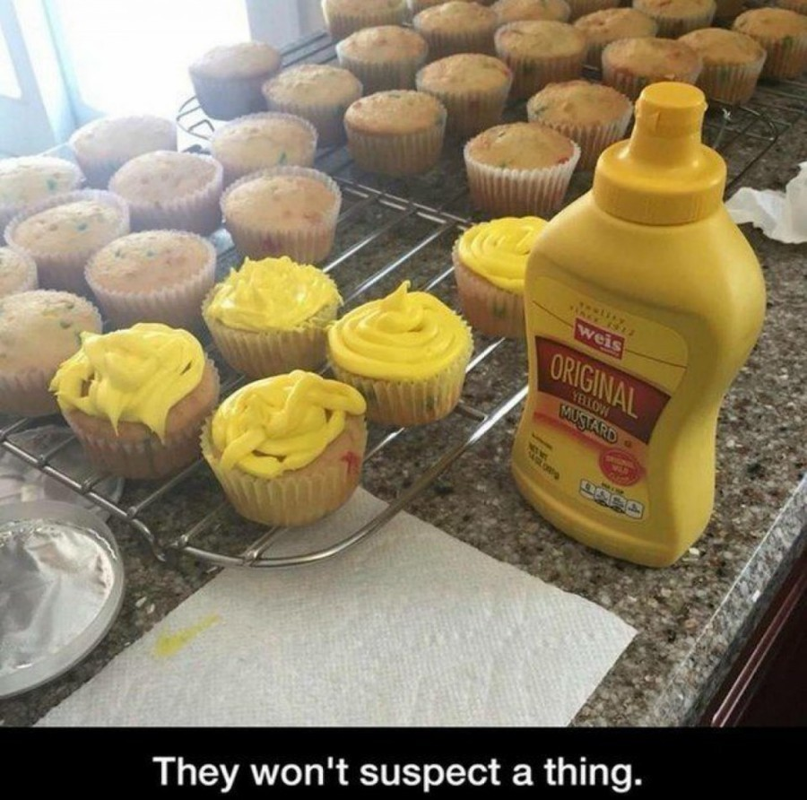 Image of: Funny Pictures Funnyjunk Random Dump Of Silly
