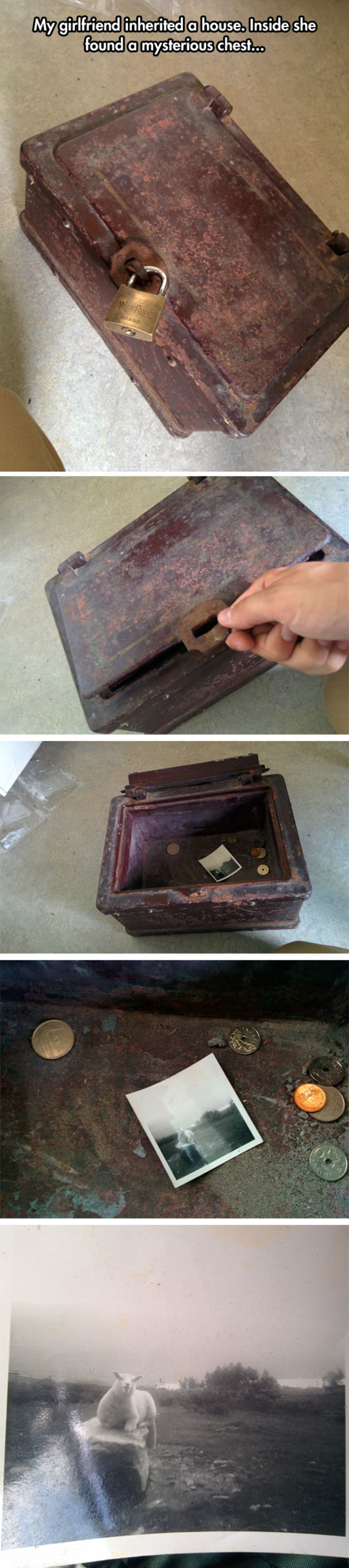 Real life treasure chest. .. Someone stashed some 1920's meme in there. Good find
