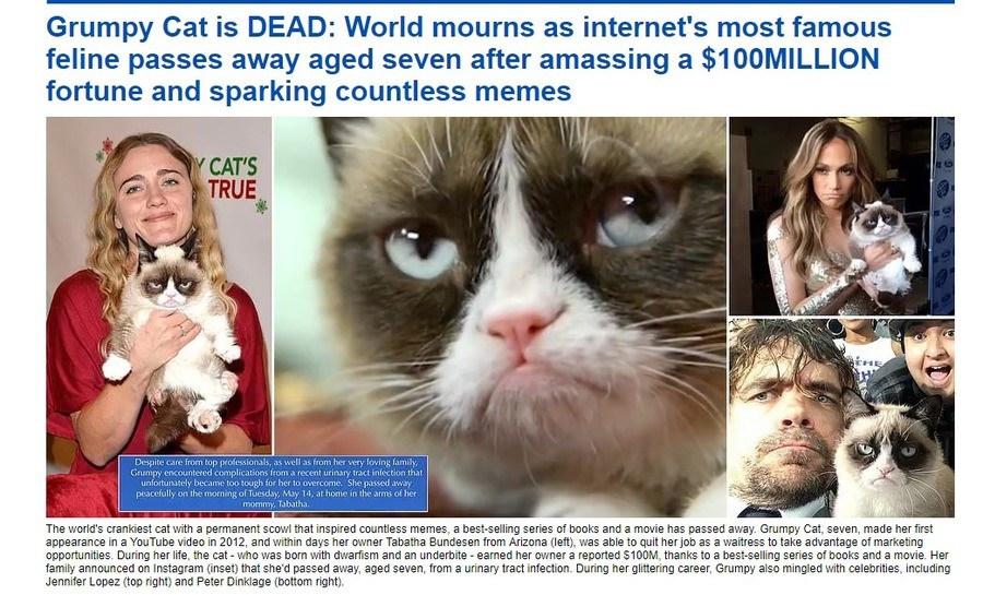 RIP Grumpy kitty. .. Never forget Frank, either