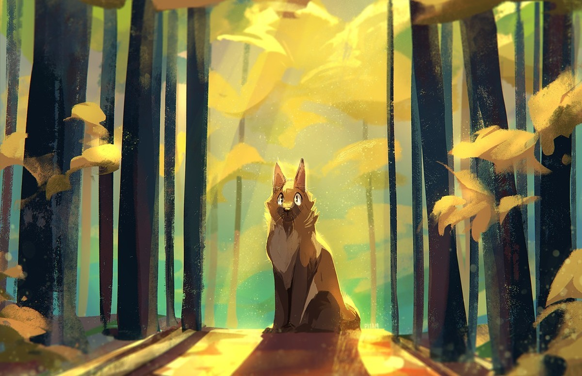 SaltPita . Edition 150 of Furry Art You Could Show Your Friends. Today's featured artist is Delaney Sang, aka Cercat or Pita, an artist from Color