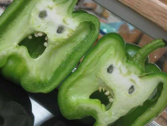 Scary Veggies. Hi how are you? .. Thumbs up. and anonymous guy; that type is not limited to america.