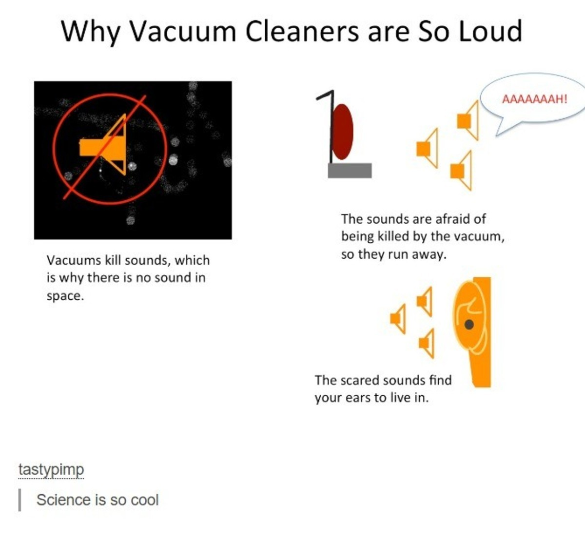 Science. . M/ 1/ cacturn Cleaners are So Loud The sounds are afraid of being killed by the vacuum, so they run away. Vacuums kill sounds, which is why there is