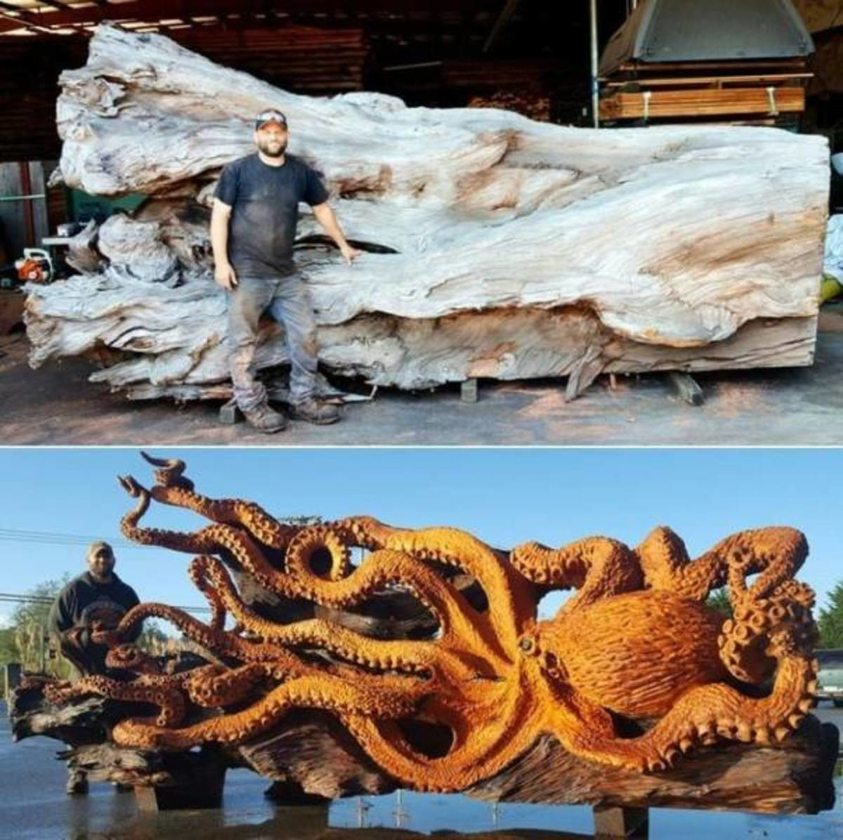 sea monster. .. i could already see the dragon head in the trunk but he went and turned it into an octopus