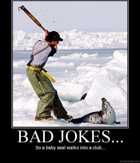 Seal jokes. .. you got me.