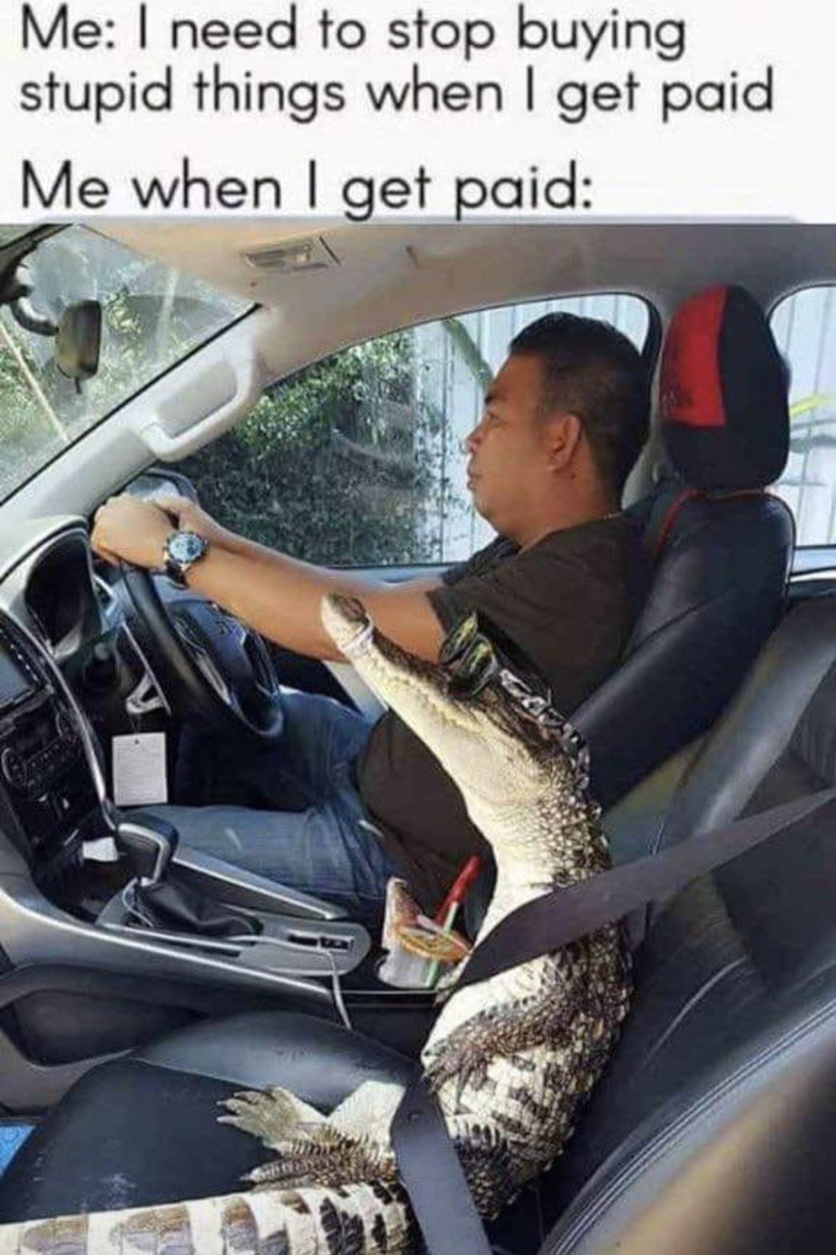 Seemed like a good idea at the time. .. Florida man buys a Mexican chauffeur