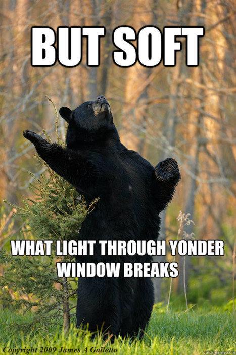 Shakespeare the Bear. . WHAT mun THROUGH mania .