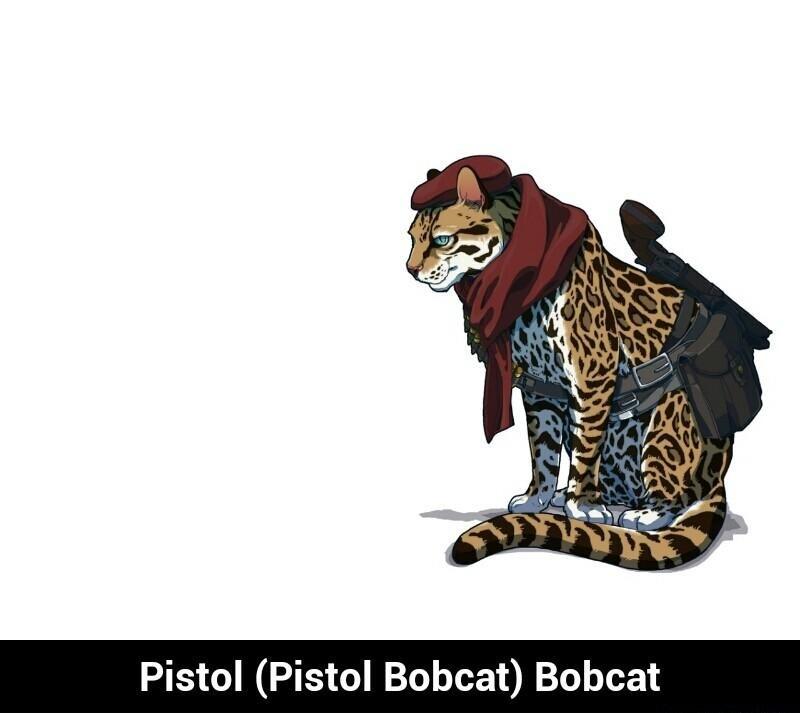 SMG Tiger. . Pistol (Pistol Bobcat) Bobcat. Firearm feline