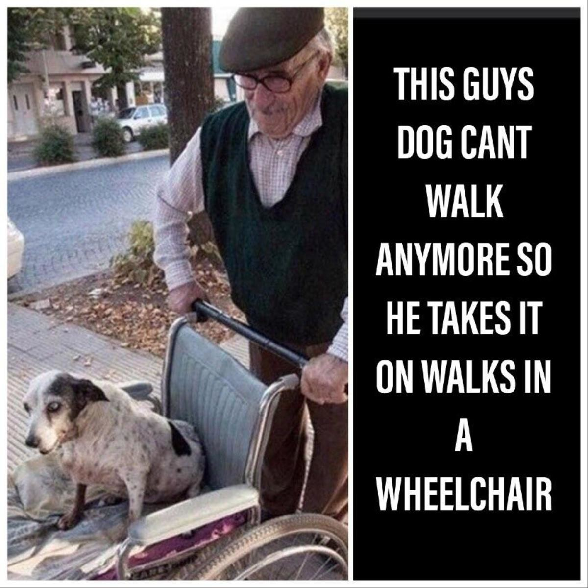 Taking the dog out for a roll. Be the person your pets think you are.. Doesn't that mean he takes rolls?