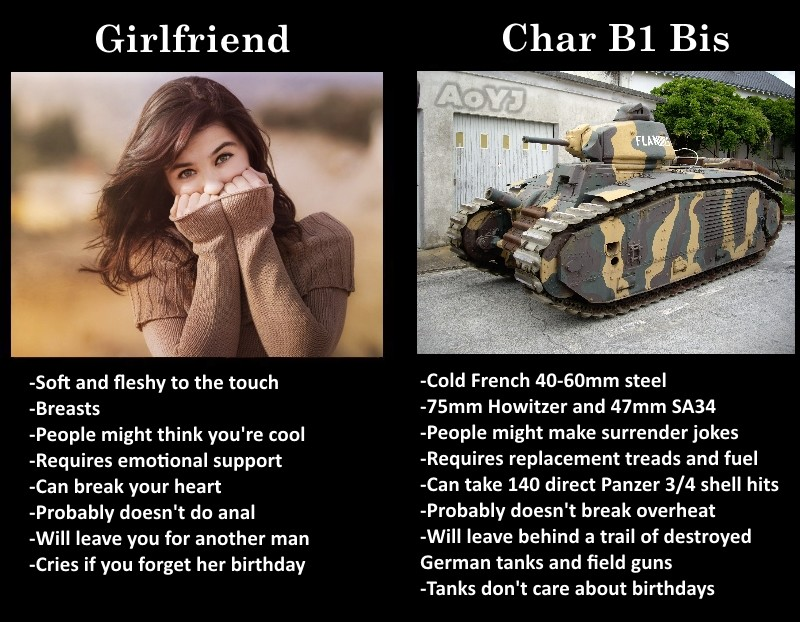 Tank vs Girlfriend. . Girlfriend Soft and fleshy to the touch Breasts People might think you' re cool Requires emotional support an break your heart Probably do