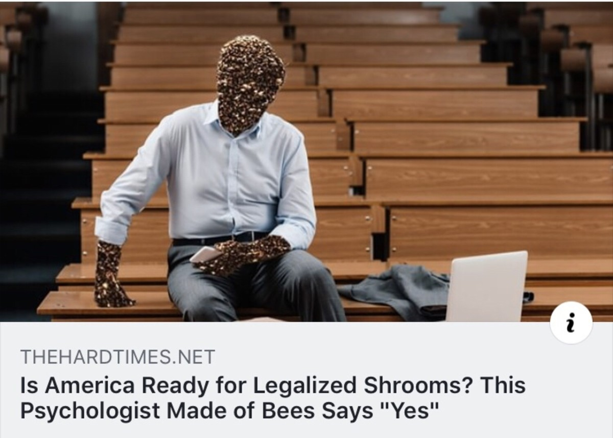 """tawdry dusty Hawk. .. is america ready for legalized shrooms? this psychologist says """"yes"""""""