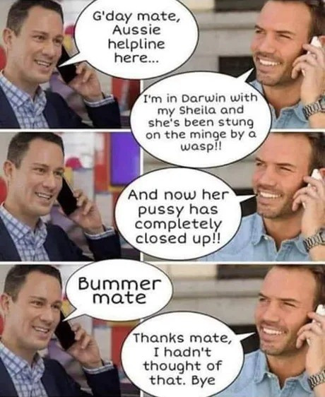 """""""The Aussie Helpline"""". .. where were you when sheila got stung? i was at home rootin me missus when she called minge's mate streuth"""