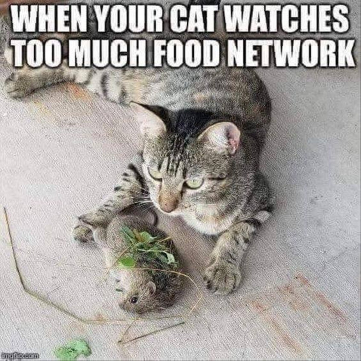 To much food network. .