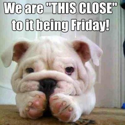 """We are """"THIS CLOSE"""".... .. I'm Australian It's already Friday here."""