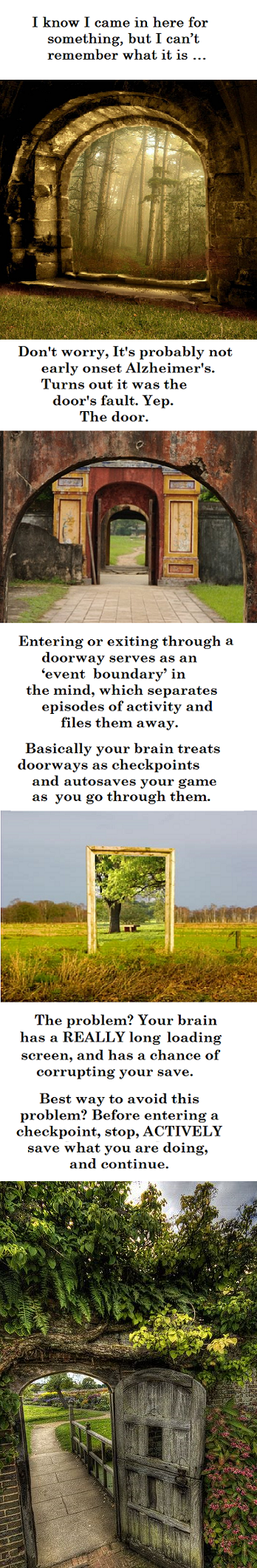 Why did I come in here again?. Im a Psych major and I love cool Brain Stuff like this. Trying to earn a voice with some OC =).. Am I able to reload an autosave from like 10 years ago?