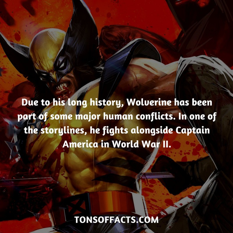 Wolverine has been part of some major human conflicts. Source: . Due to his long history, Wolverine has been part of some major human conflicts. In one of the s