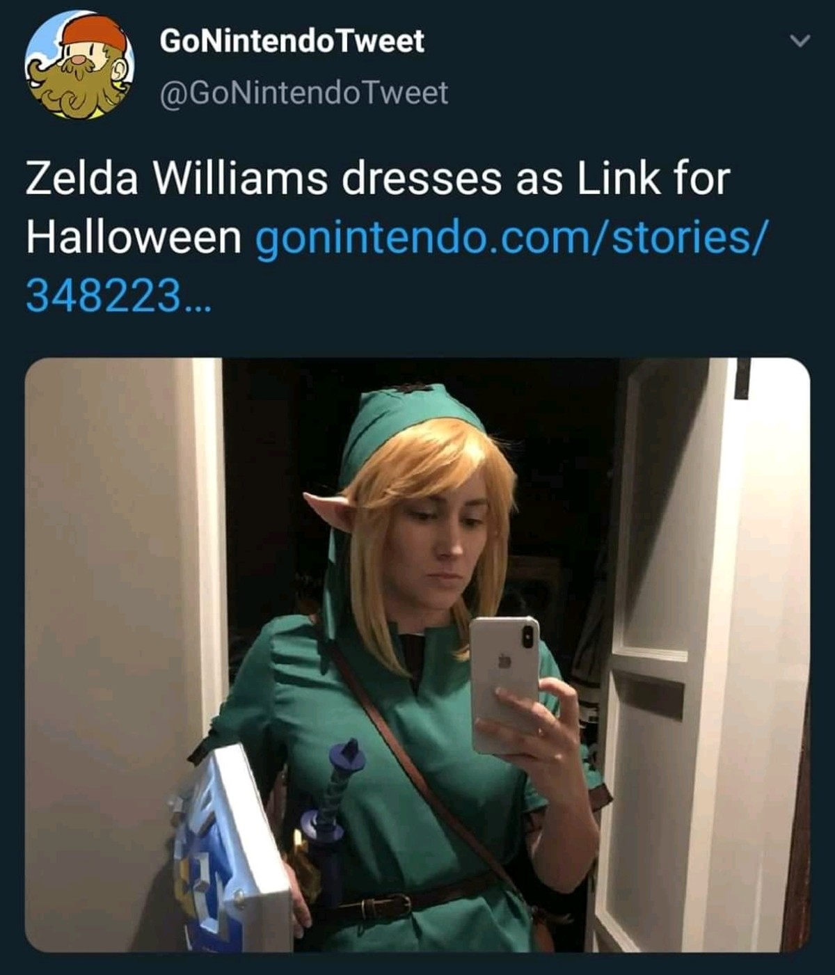 Zelda as link. .. She probably thought it was Zelda I'm kidding don't kill me