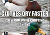 Actual advice mallard comp
