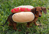 A pic of my wiener (dont tell mods)
