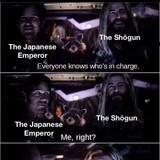 The Tokugawa Shogunate (1600 - 1868)