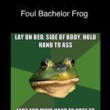 Foul Bachelor Frog Comp