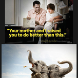 Funny Ad Comp 2