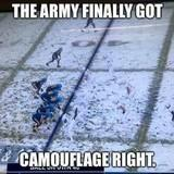 Army gets effective camo